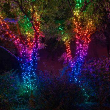 Multicoloured Lighting