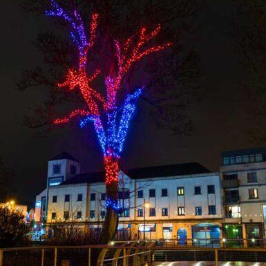 Sligo Twinkly Lighting